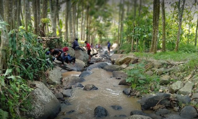 Wisata Alam Banyu Mili Jombang